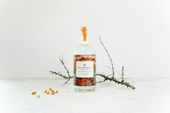 Bax-Botanics-Sea buckthorn Bottle Studio