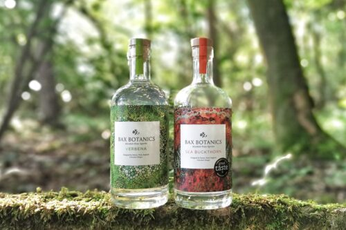 Bottles of alcohol free gin in the woods. Sea Buckthorn, Verbena