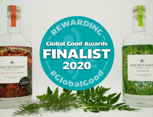 Global Good Awards Finalist!