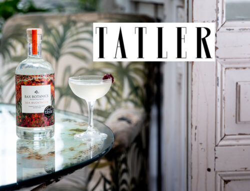 Tatler – Cheers! These are the best alcohol-free brands for Stoptober. So good, you may bid farewell to hangovers forever!